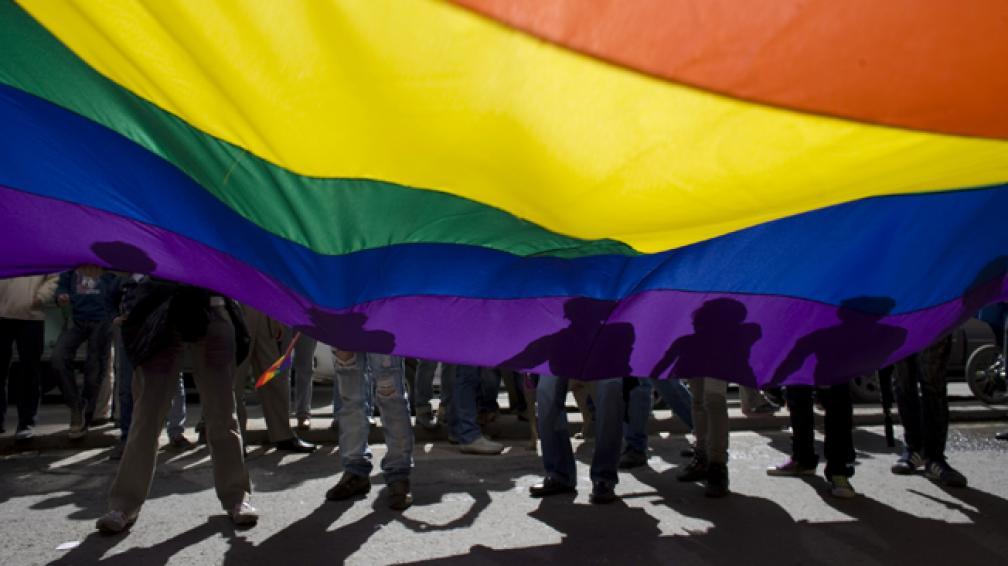 EL PROYECTO. Busca eliminar la ley Doma, que no reconoce las uniones entre homosexuales.