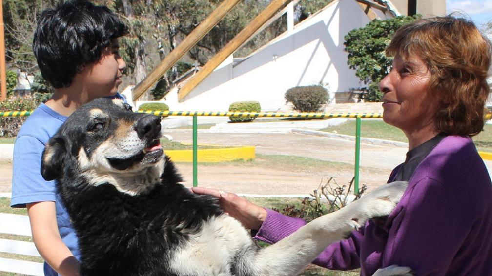 Famoso. Cansado de las cámaras, ayer, Capitán dejó el cementerio y fue un rato a su casa. El perro y su familia –Verónica y su hijo Damián– fueron noticia en el país (LaVoz).