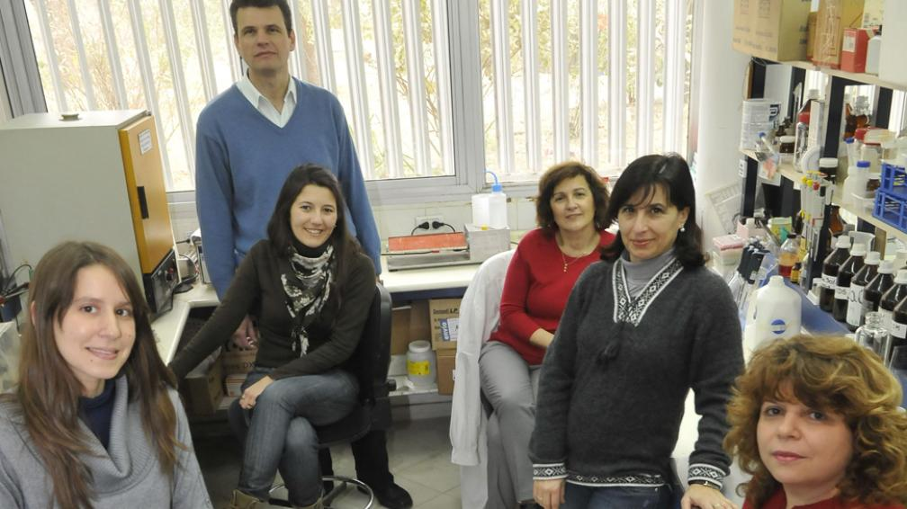 Londres 2012. Pese a las más de 4.500 pruebas de detección de dopaje, aún no se estudia el genético (Martín Báez/LaVoz).