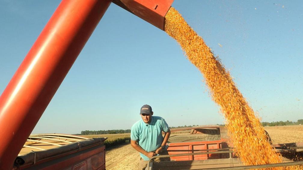10 millones. Es la cantidad de toneladas de soja de la campaña pasada que aún queda en poder de los productores (La Voz / Archivo).