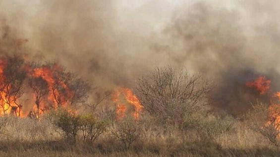 DESPEÑADEROS. Incendio reavivado esta tarde (La Voz).