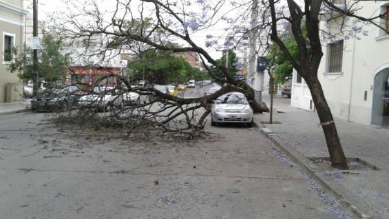AUTO APLASTADO. En barrio General Paz (El Doce).
