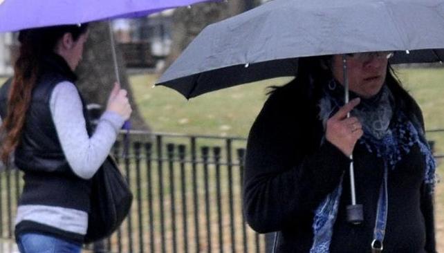 Paraguas. Salieron del placard.