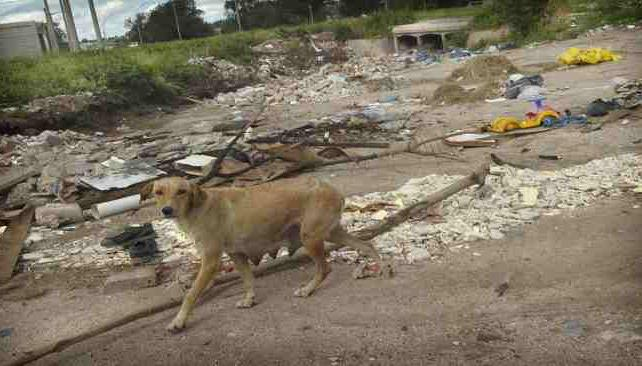 Barrio Yapeyú. Uno de los 23 basurales relevados por la Defensoría. La Municipalidad afirma que en verano se generan más residuos.